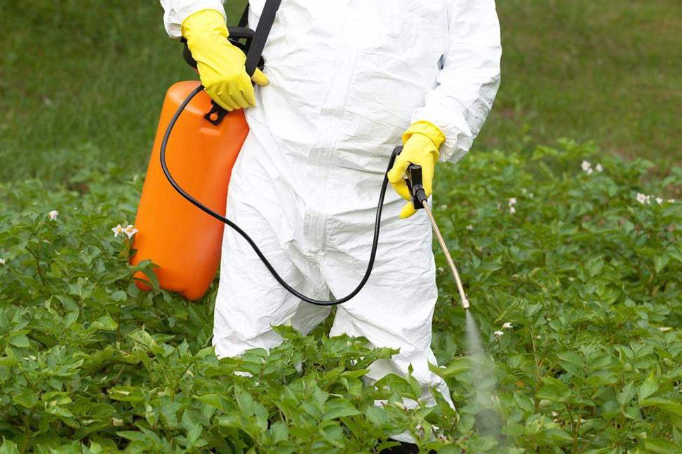 Roundup weed killer spray