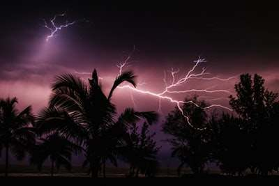 Does Homeowners Insurance Cover Trees Struck By Lightning?